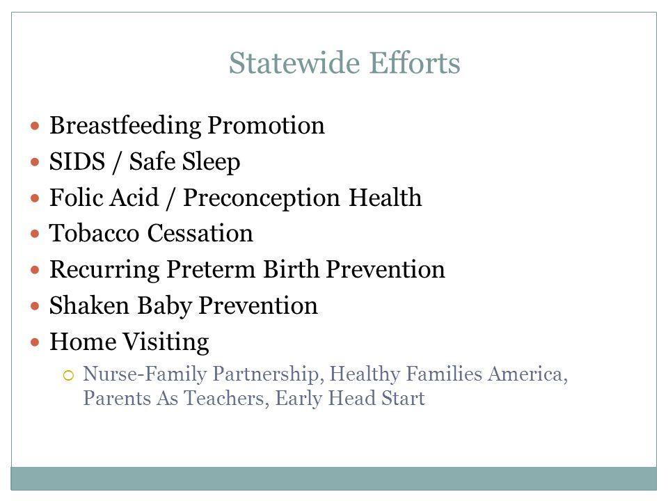 Breastfeeding Promotion SIDS / Safe Sleep Folic Acid / Preconception Health Tobacco Cessation Recurring Preterm Birth Prevention Shaken Baby Preventio