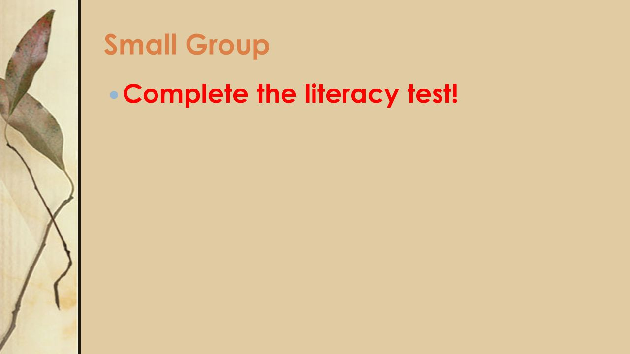 Small Group Complete the literacy test!