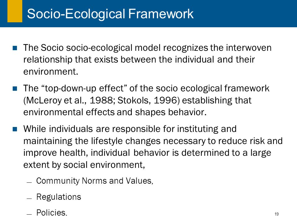 19 Socio-Ecological Framework The Socio socio-ecological model recognizes the interwoven relationship that exists between the individual and their environment.