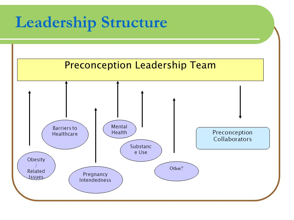 Leadership Structure Preconception Leadership Team Preconception Collaborators Pregnancy Intendedness Barriers to Healthcare Obesity / Related Issues Mental Health Substanc e Use Other