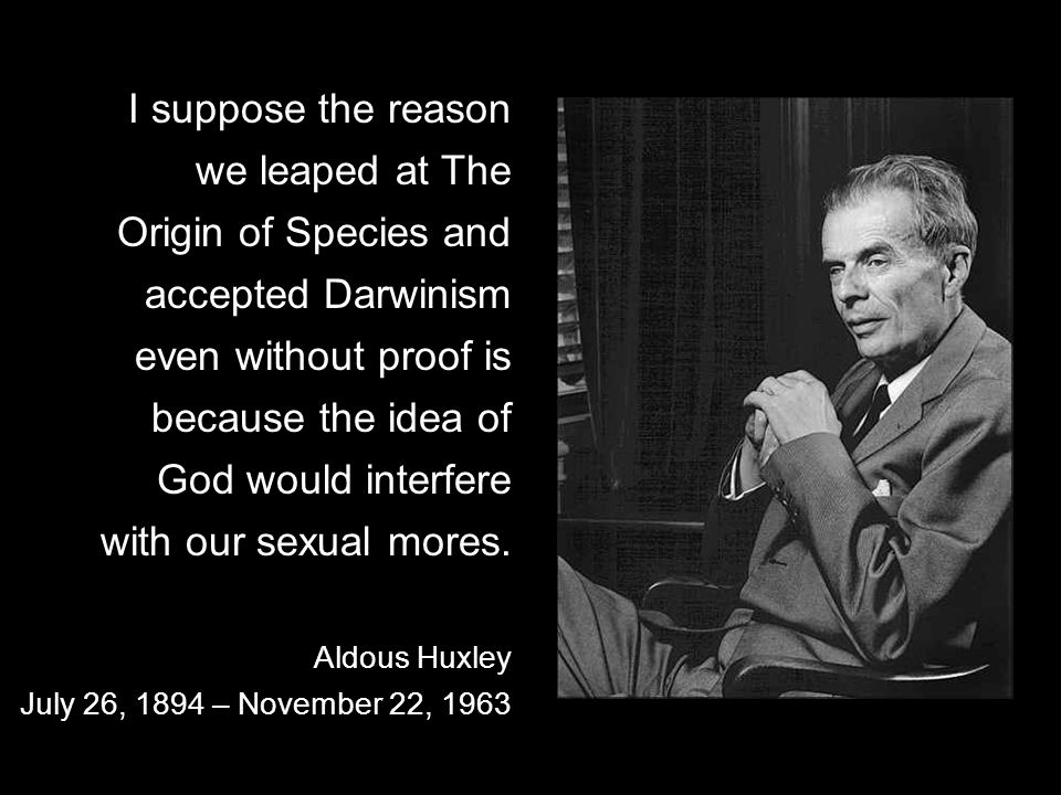 I suppose the reason we leaped at The Origin of Species and accepted Darwinism even without proof is because the idea of God would interfere with our