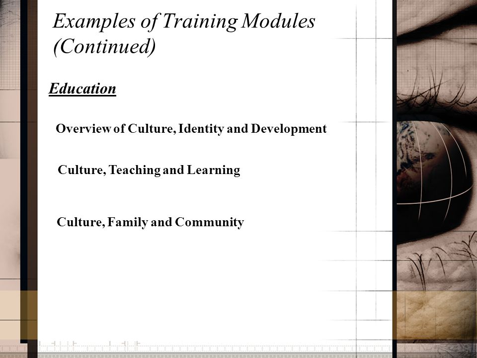 Examples of Training Modules (Continued) Education Overview of Culture, Identity and Development Culture, Teaching and Learning Culture, Family and Community
