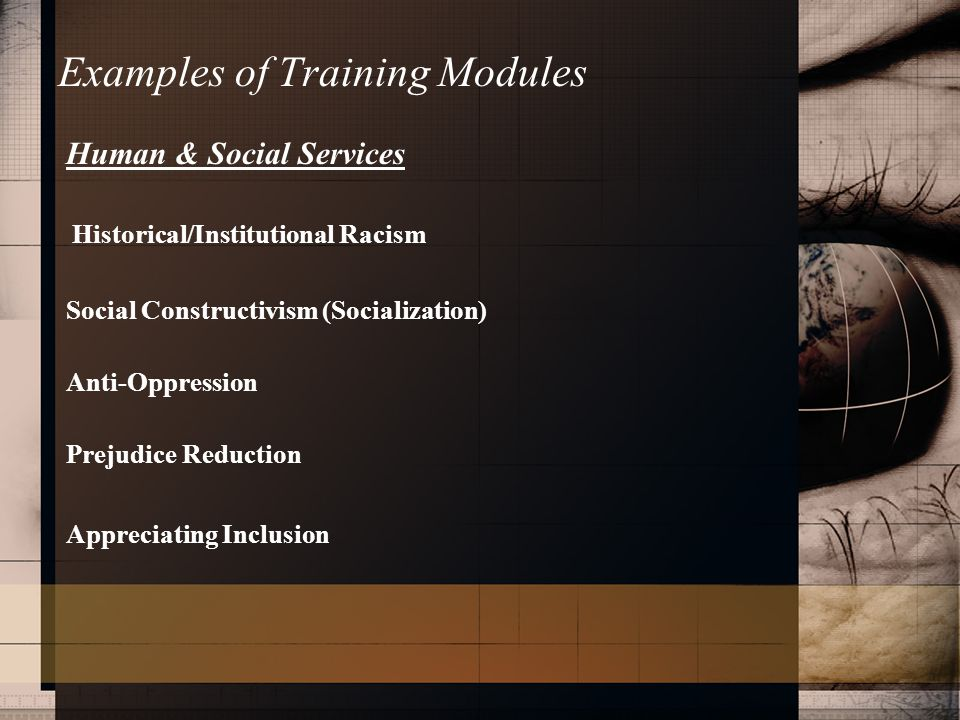 Examples of Training Modules Human & Social Services Historical/Institutional Racism Social Constructivism (Socialization) Anti-Oppression Prejudice Reduction Appreciating Inclusion