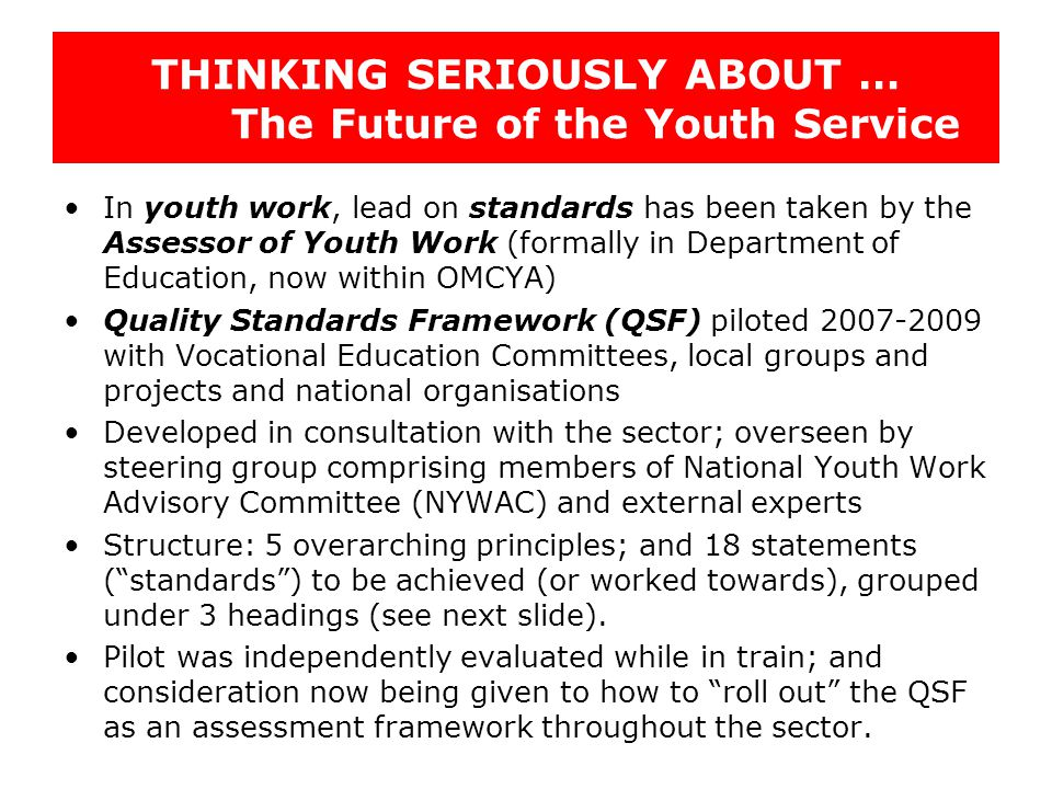 THINKING SERIOUSLY ABOUT … The Future of the Youth Service In youth work, lead on standards has been taken by the Assessor of Youth Work (formally in