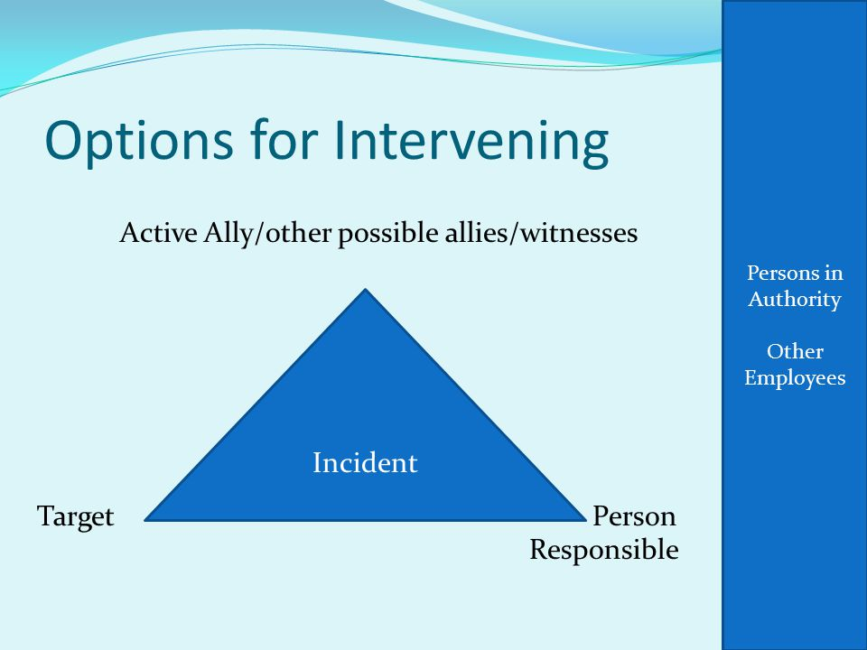 Options for Intervening Active Ally/other possible allies/witnesses Target Person Responsible Incident Persons in Authority Other Employees