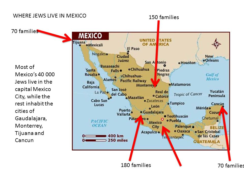 WHERE JEWS LIVE IN MEXICO Most of Mexico's 40 000 Jews live in the capital Mexico City, while the rest inhabit the cities of Gaudalajara, Monterrey, Tijuana and Cancun 70 families 150 families 70 families 180 families