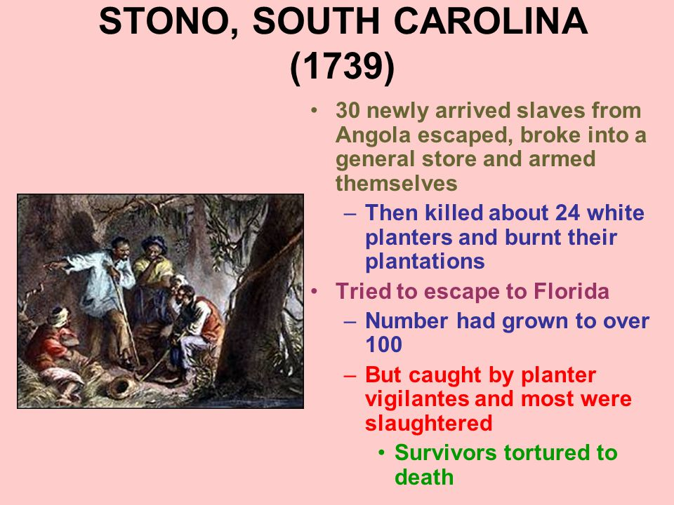 STONO, SOUTH CAROLINA (1739) 30 newly arrived slaves from Angola escaped, broke into a general store and armed themselves –Then killed about 24 white
