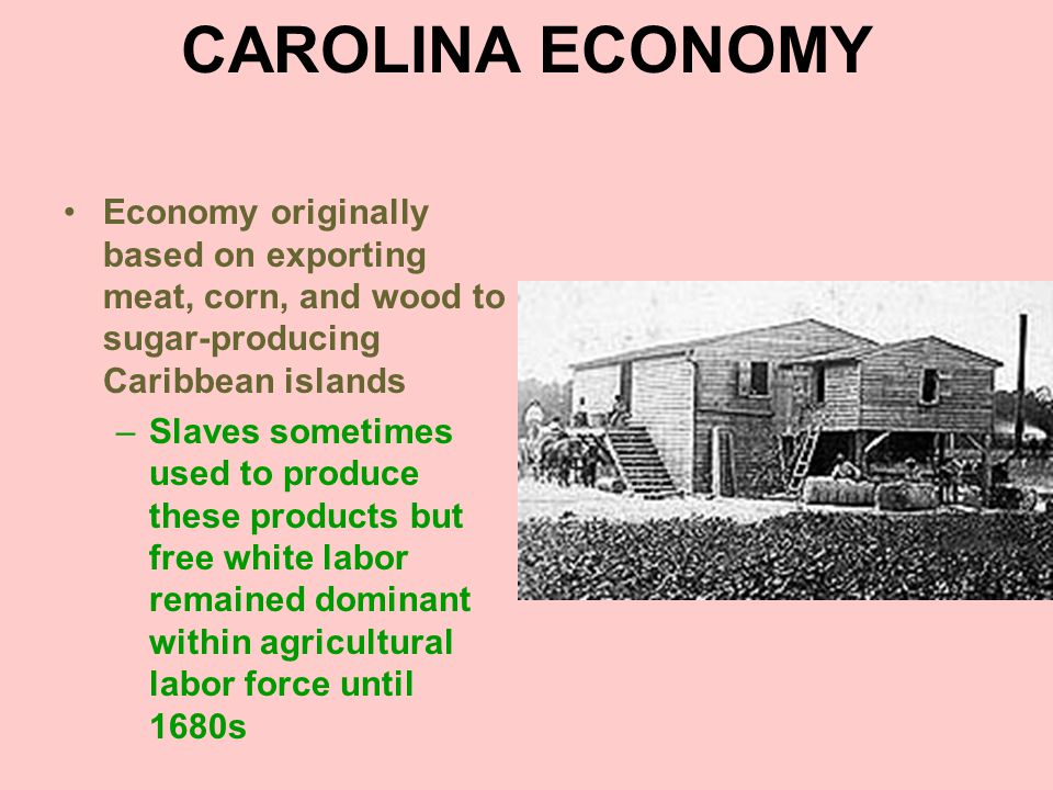 RICE Sugar market collapsed in 1680s, plunging Caribbean islands into a deep depression –Bought much less of Carolina products Carolina colonists looked for new staple crop –Found it in rice Perfectly suited for local climate and terrain Very strong market for it