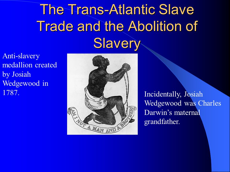 The Trans-Atlantic Slave Trade and the Abolition of Slavery Anti-slavery medallion created by Josiah Wedgewood in 1787.