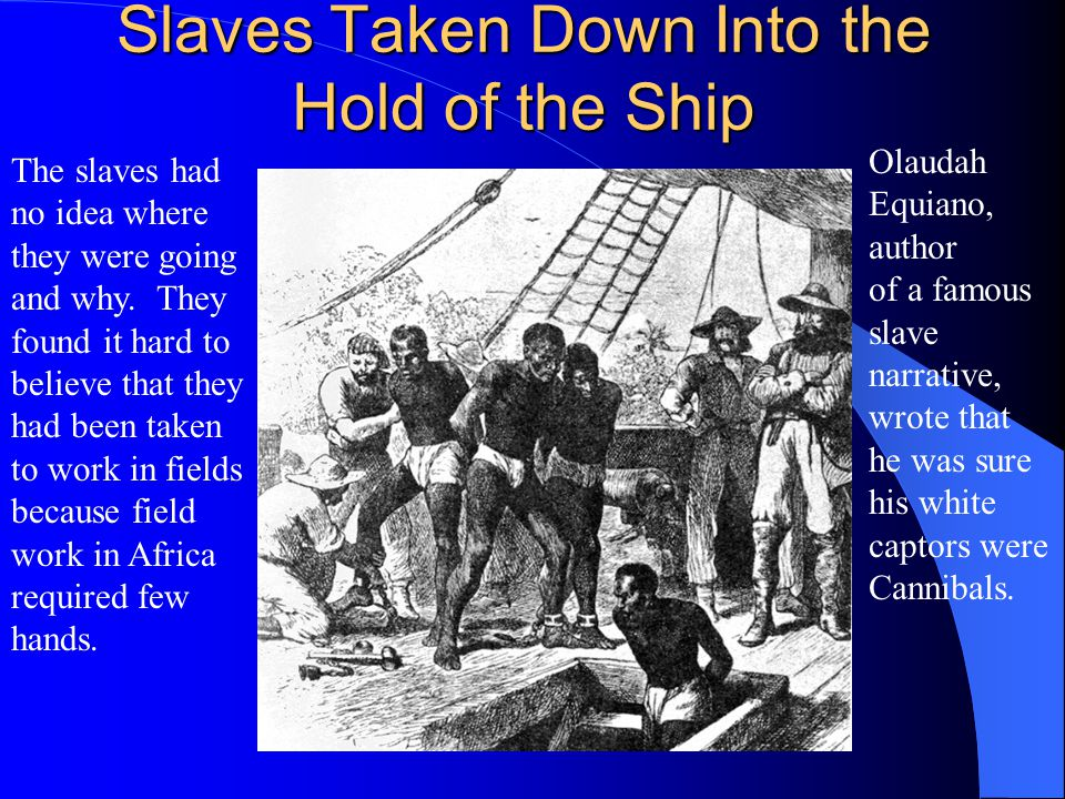 Slaves Taken Down Into the Hold of the Ship The slaves had no idea where they were going and why.