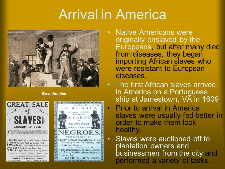 Arrival in America Native Americans were originally enslaved by the Europeans, but after many died from diseases, they began importing African slaves