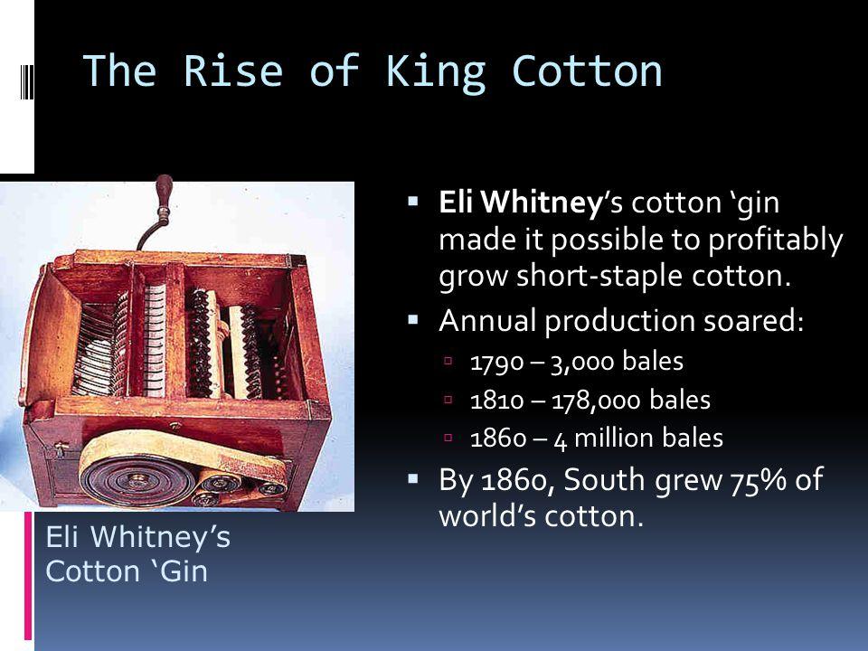 The Cotton Kingdom  Over ½ grown in Ala., Miss.& La.