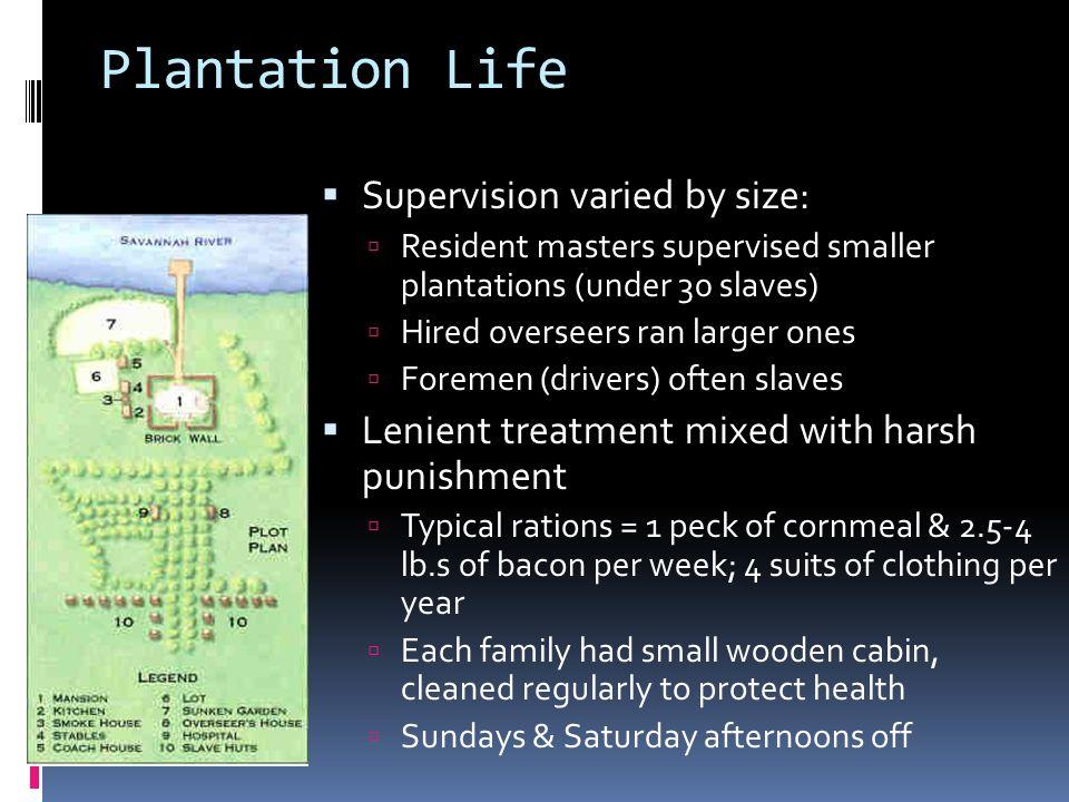 Slave Quarters, Carter's Grove Plantation, Virginia