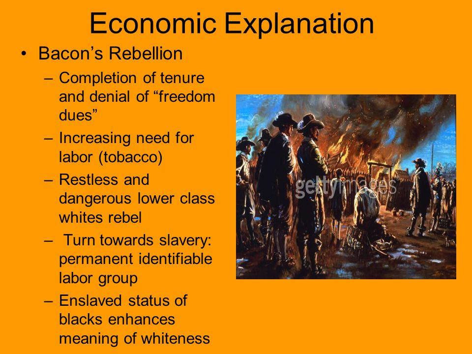 Economic Explanation Bacon's Rebellion –Completion of tenure and denial of freedom dues –Increasing need for labor (tobacco) –Restless and dangerous lower class whites rebel – Turn towards slavery: permanent identifiable labor group –Enslaved status of blacks enhances meaning of whiteness