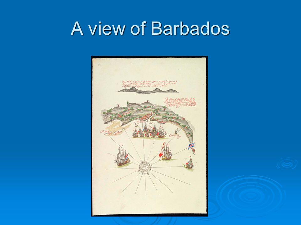 A view of Barbados