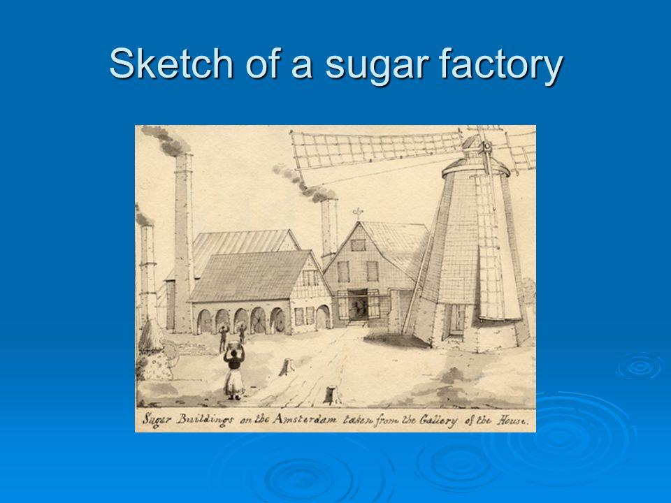 Sketch of a sugar factory