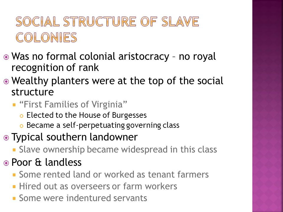 Was no formal colonial aristocracy – no royal recognition of rank  Wealthy planters were at the top of the social structure  First Families of Virginia Elected to the House of Burgesses Became a self-perpetuating governing class  Typical southern landowner  Slave ownership became widespread in this class  Poor & landless  Some rented land or worked as tenant farmers  Hired out as overseers or farm workers  Some were indentured servants