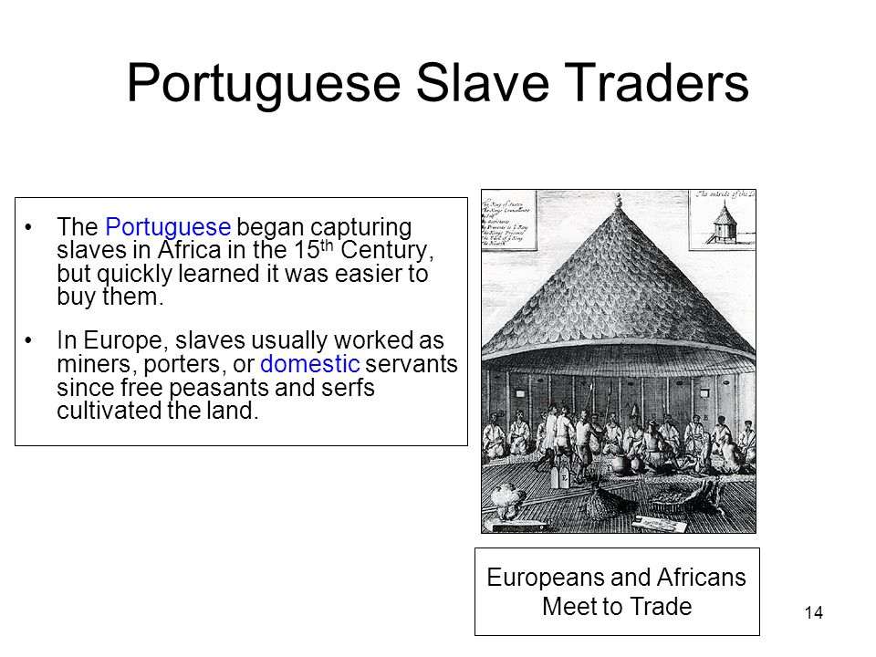 Portuguese Slave Traders The Portuguese began capturing slaves in Africa in the 15 th Century, but quickly learned it was easier to buy them.