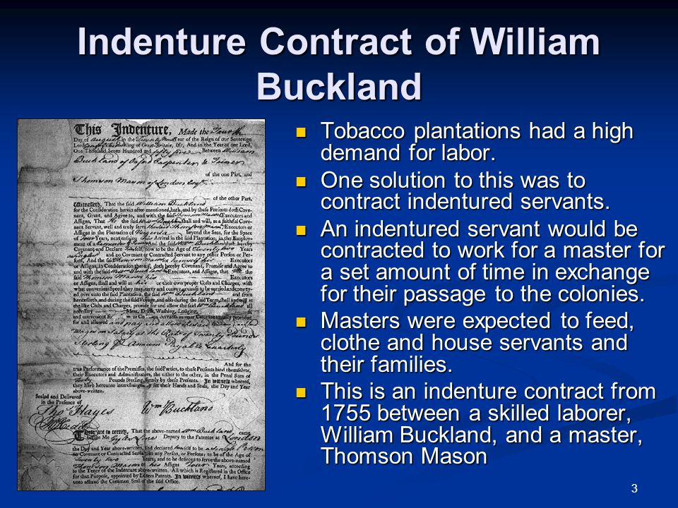3 Indenture Contract of William Buckland Tobacco plantations had a high demand for labor.