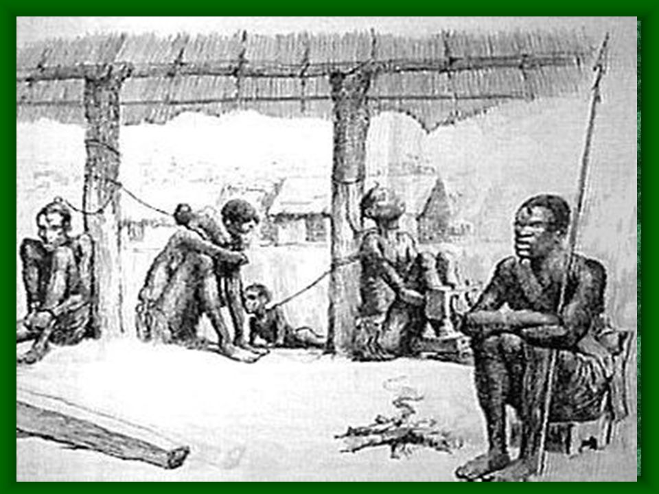 The Amistad Africans Trial After the mutiny, the Africans were arrested and tried for murder in the United States.
