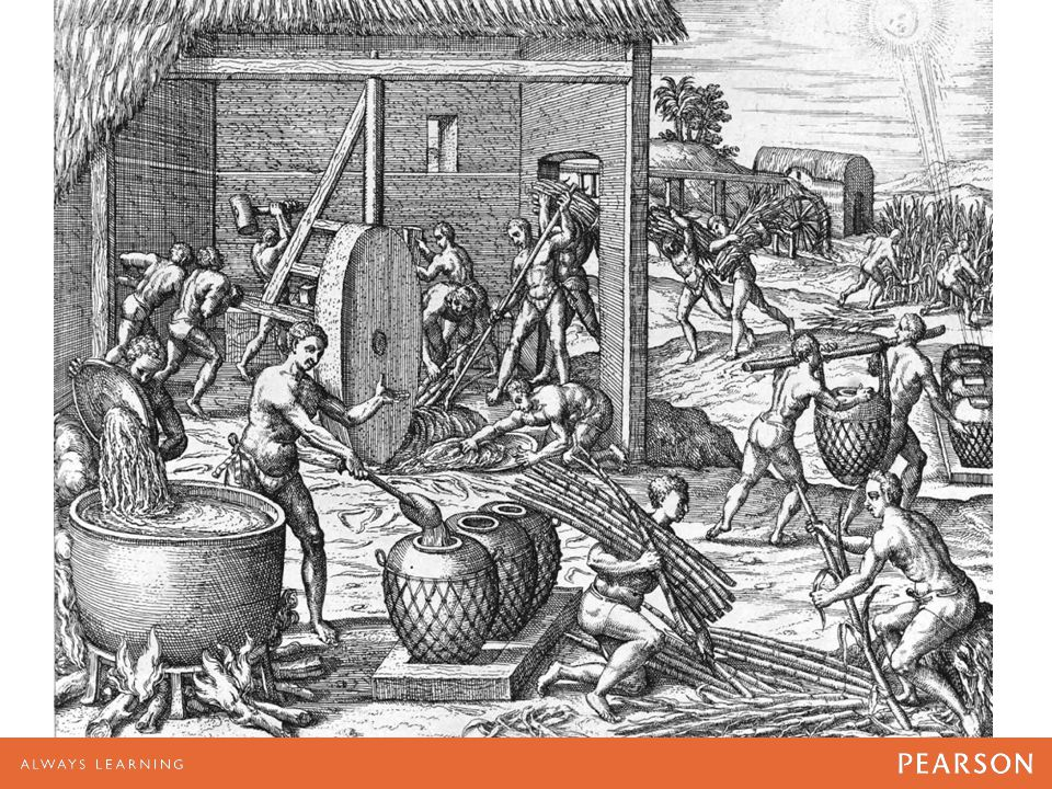 African slaves operate a sugar mill