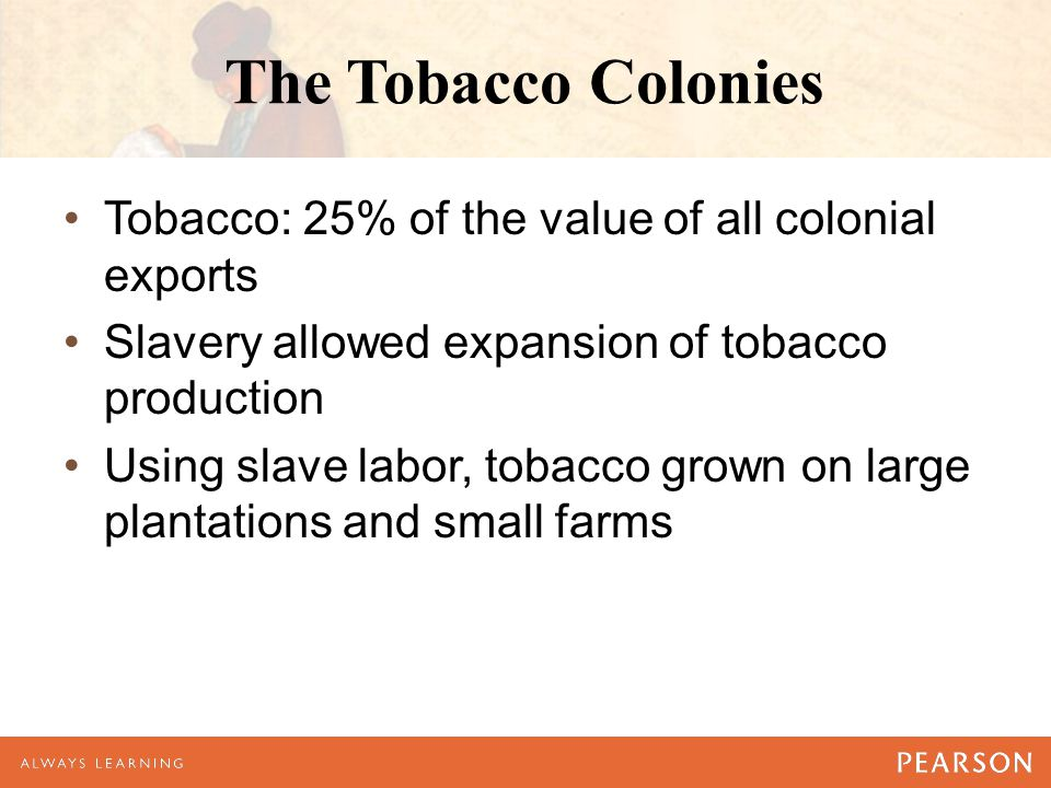 The Tobacco Colonies Tobacco: 25% of the value of all colonial exports Slavery allowed expansion of tobacco production Using slave labor, tobacco grown on large plantations and small farms