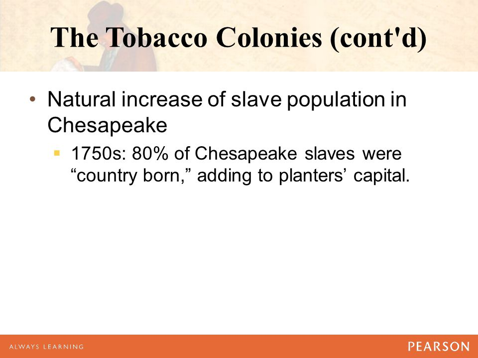 The Tobacco Colonies (cont d) Natural increase of slave population in Chesapeake  1750s: 80% of Chesapeake slaves were country born, adding to planters' capital.