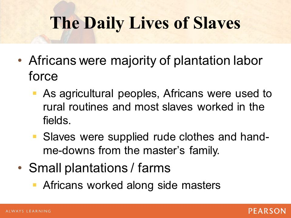 The Daily Lives of Slaves Africans were majority of plantation labor force  As agricultural peoples, Africans were used to rural routines and most slaves worked in the fields.