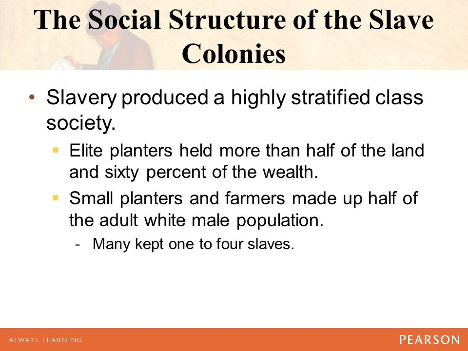 The Social Structure of the Slave Colonies Slavery produced a highly stratified class society.  Elite planters held more than half of the land and si