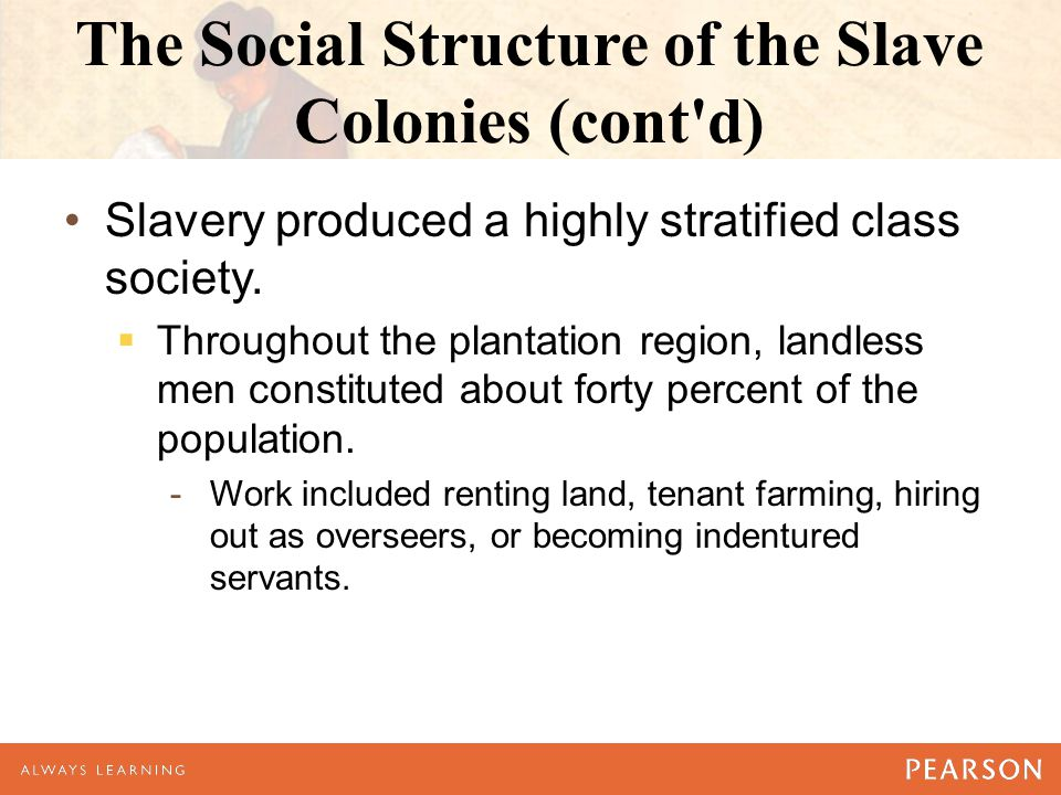 The Social Structure of the Slave Colonies (cont'd) Slavery produced a highly stratified class society.  Throughout the plantation region, landless m