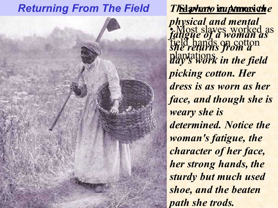 Slavery in America Returning From The Field The photo captures the physical and mental fatigue of a woman as she returns from a day s work in the field picking cotton.
