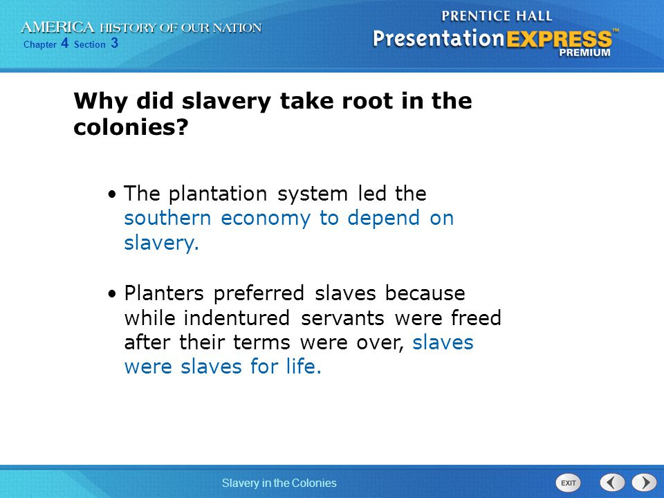 Chapter 4 Section 3 Slavery in the Colonies Why did slavery take root in the colonies? The plantation system led the southern economy to depend on sla