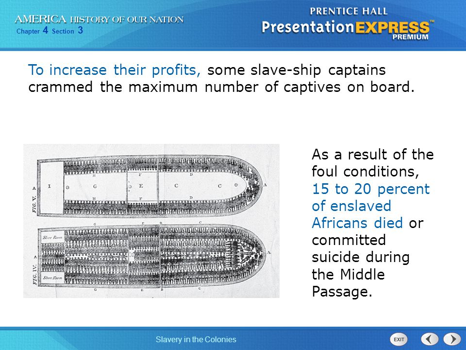 Chapter 4 Section 3 Slavery in the Colonies To increase their profits, some slave-ship captains crammed the maximum number of captives on board. As a
