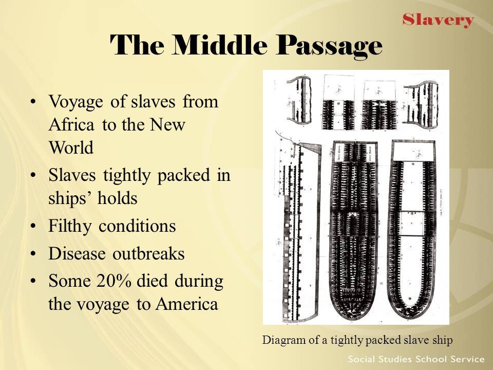 The Middle Passage Voyage of slaves from Africa to the New World Slaves tightly packed in ships' holds Filthy conditions Disease outbreaks Some 20% di