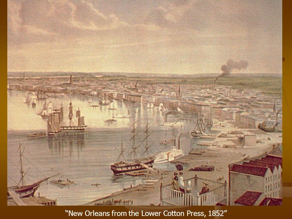 """New Orleans from the Lower Cotton Press, 1852"""