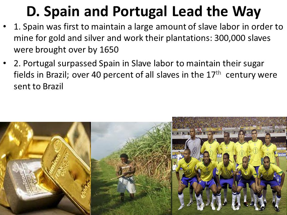 D. Spain and Portugal Lead the Way 1. Spain was first to maintain a large amount of slave labor in order to mine for gold and silver and work their pl