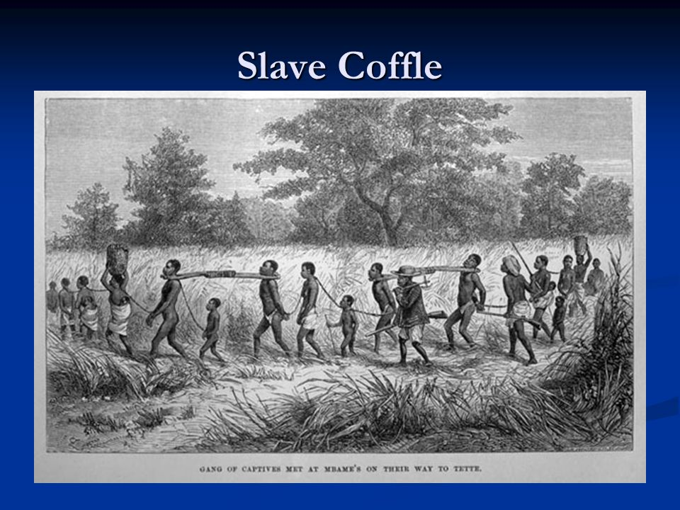 Middle Passage 1600's – 1850's Approx.60 forts build along the west coast of Africa.