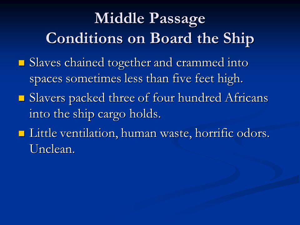1789 Slave Ship, Brooks
