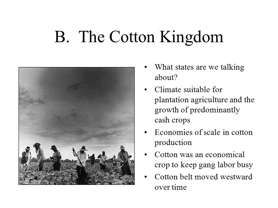 B. The Cotton Kingdom What states are we talking about.