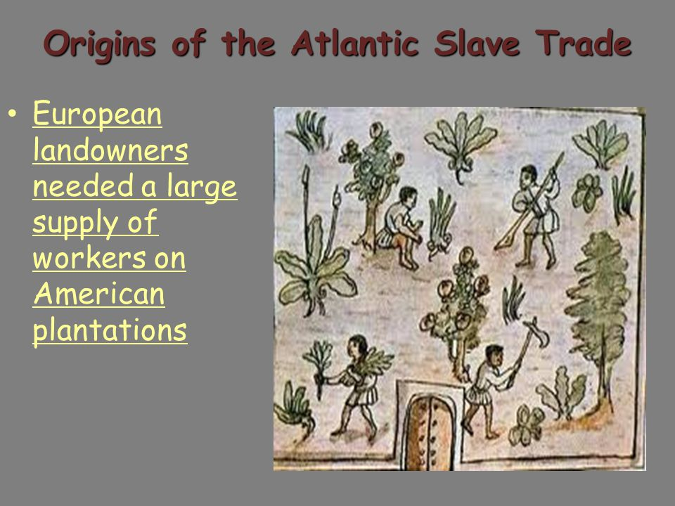 Origins of the Atlantic Slave Trade Spanish attempts to use Native Americans as laborers were not successful Large death rate due to disease and overwork Bartolome de la Casas convinces Spanish to stop using Native Americans English use of Indentured Servants was expensive People who worked for a set period in exchange for passage to the Americas