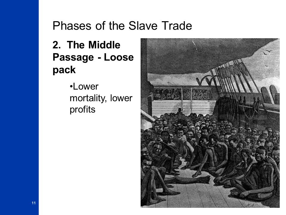 11 Phases of the Slave Trade 2. The Middle Passage - Loose pack Lower mortality, lower profits