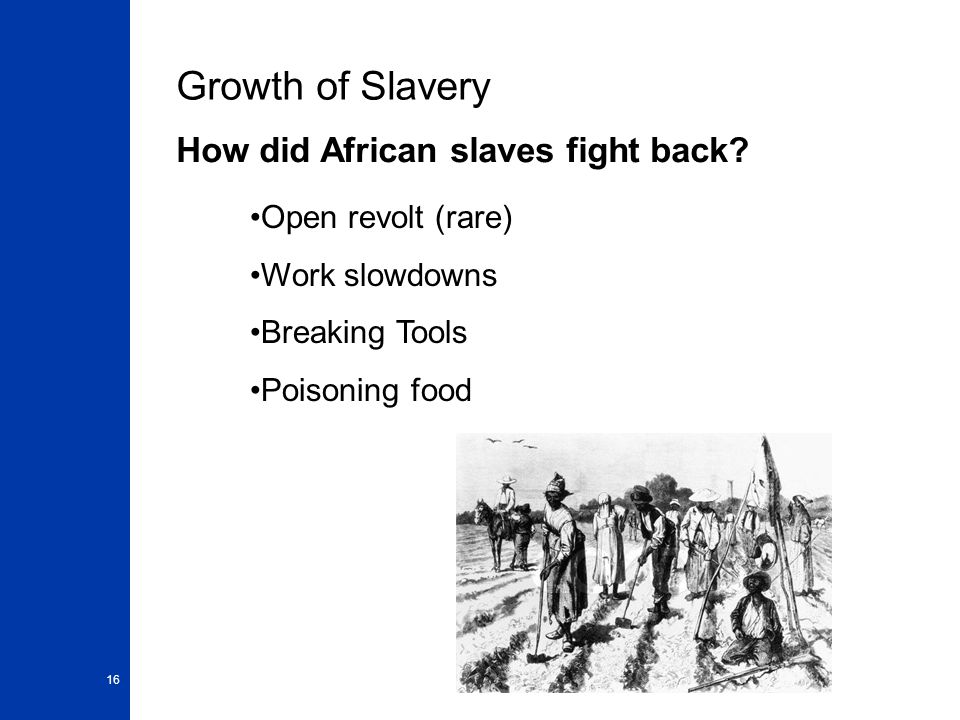 16 Growth of Slavery How did African slaves fight back.