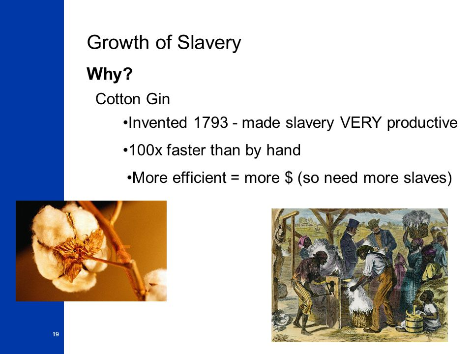 19 Growth of Slavery Why.