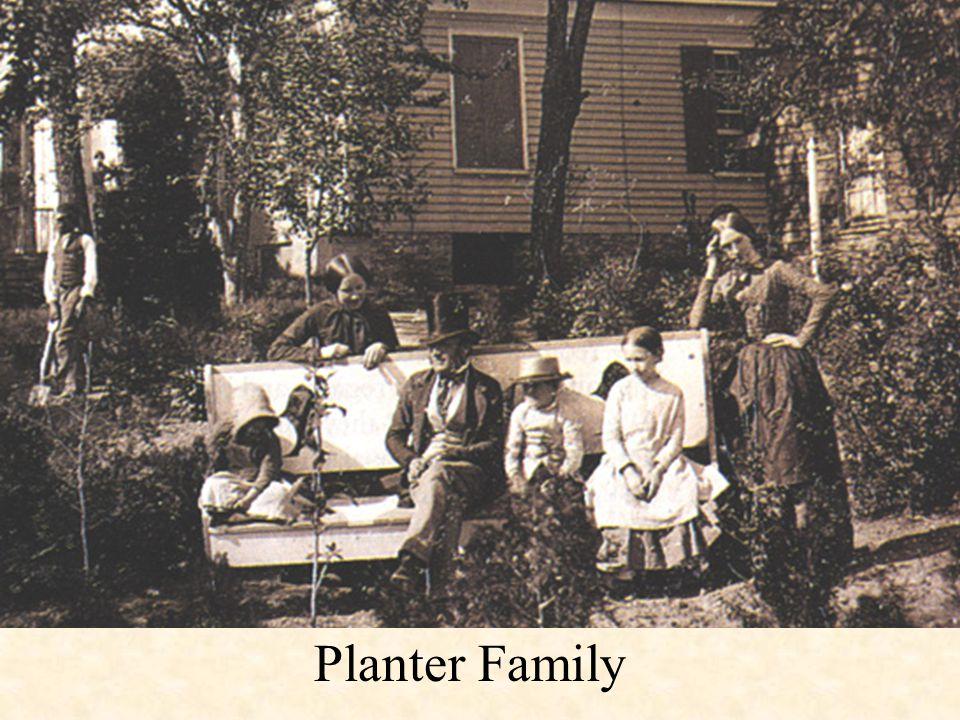 Planter Family