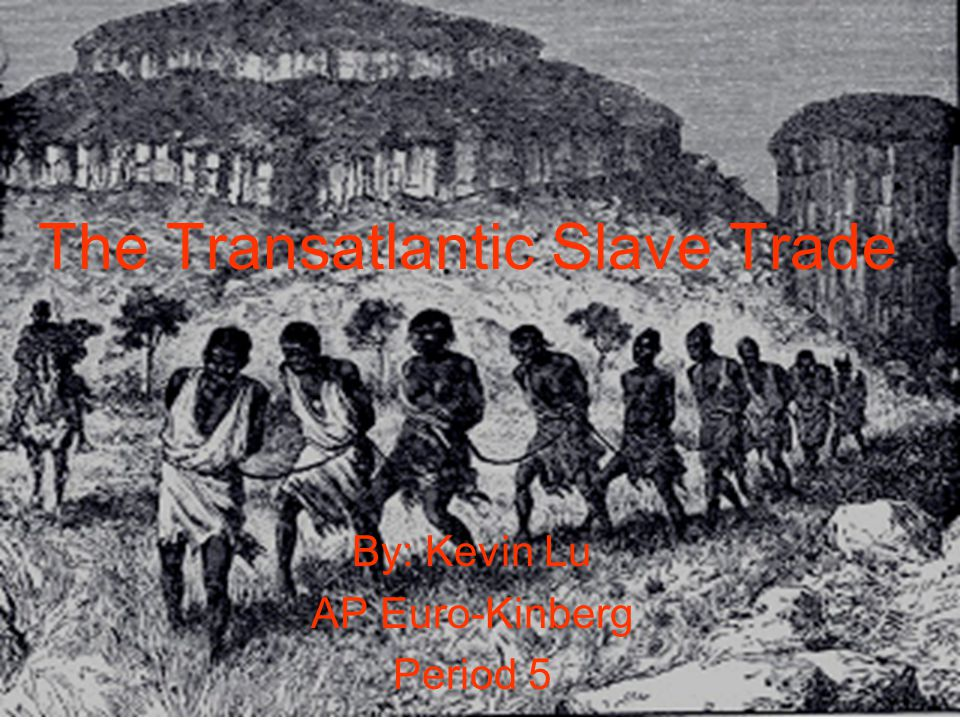 The Transatlantic Slave Trade By: Kevin Lu AP Euro-Kinberg Period 5