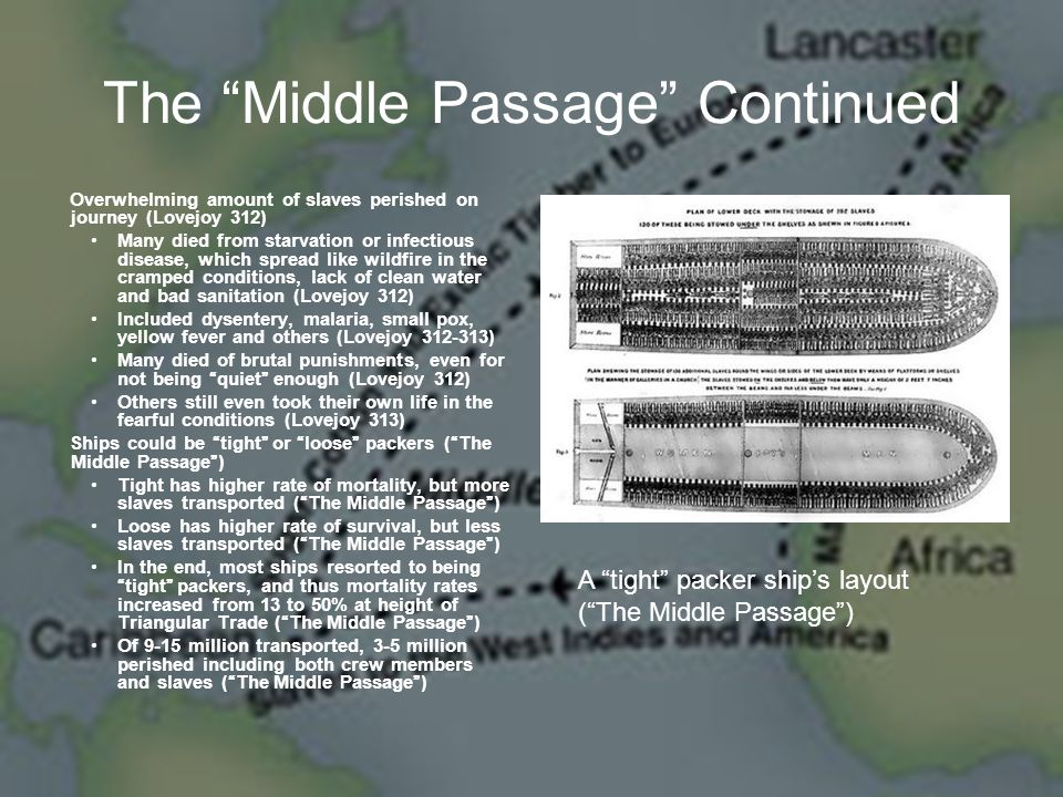 The Middle Passage Continued Overwhelming amount of slaves perished on journey (Lovejoy 312) Many died from starvation or infectious disease, which spread like wildfire in the cramped conditions, lack of clean water and bad sanitation (Lovejoy 312) Included dysentery, malaria, small pox, yellow fever and others (Lovejoy 312-313) Many died of brutal punishments, even for not being quiet enough (Lovejoy 312) Others still even took their own life in the fearful conditions (Lovejoy 313) Ships could be tight or loose packers ( The Middle Passage ) Tight has higher rate of mortality, but more slaves transported ( The Middle Passage ) Loose has higher rate of survival, but less slaves transported ( The Middle Passage ) In the end, most ships resorted to being tight packers, and thus mortality rates increased from 13 to 50% at height of Triangular Trade ( The Middle Passage ) Of 9-15 million transported, 3-5 million perished including both crew members and slaves ( The Middle Passage ) A tight packer ship's layout ( The Middle Passage )
