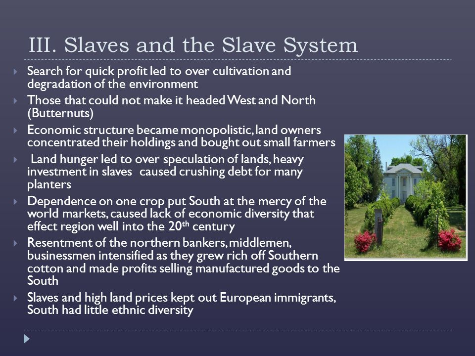 III. Slaves and the Slave System  Search for quick profit led to over cultivation and degradation of the environment  Those that could not make it h