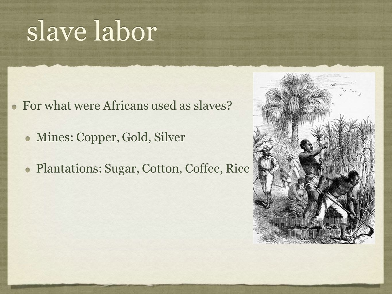 slave labor For what were Africans used as slaves? Mines: Copper, Gold, Silver Plantations: Sugar, Cotton, Coffee, Rice For what were Africans used as