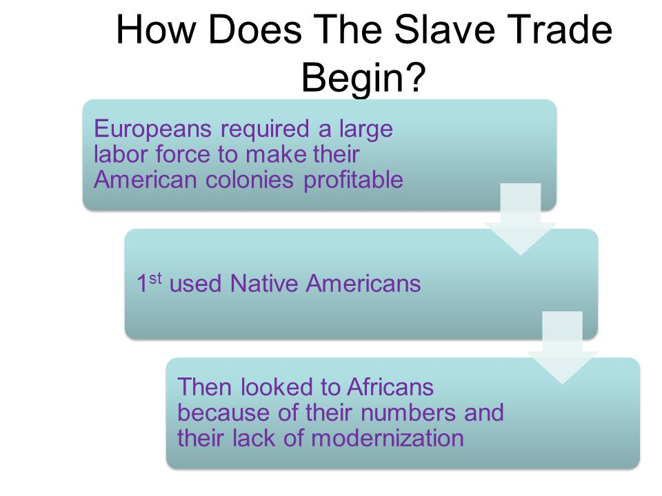 How Does The Slave Trade Begin? Europeans required a large labor force to make their American colonies profitable 1 st used Native Americans Then look