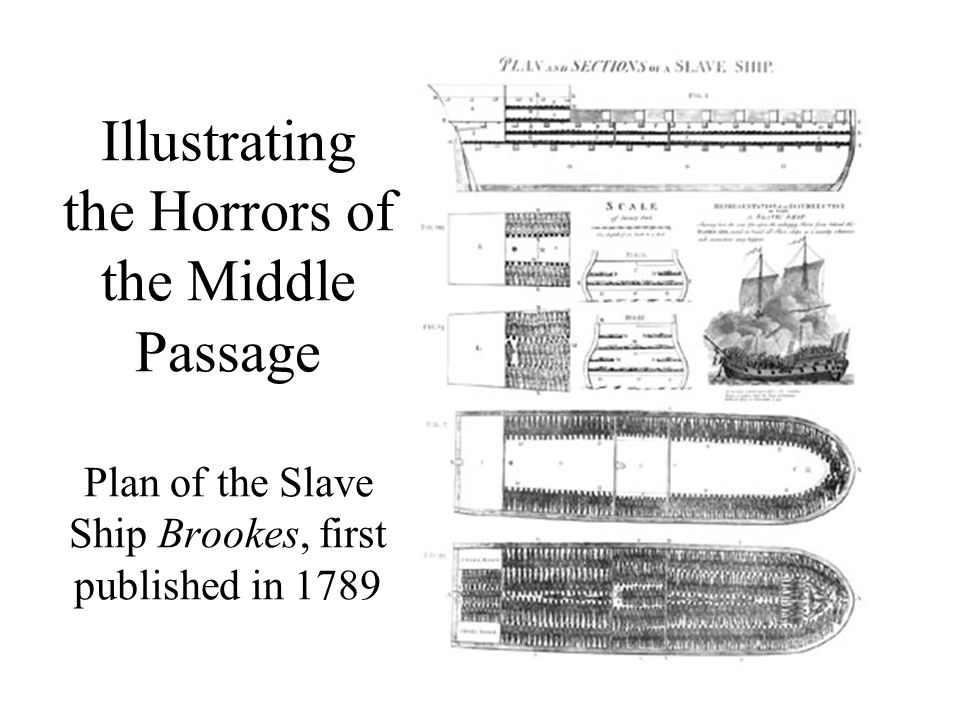 Illustrating the Horrors of the Middle Passage Plan of the Slave Ship Brookes, first published in 1789
